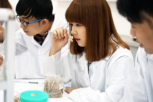 Ngành Cao đẳng Dược HCM lấy bao nhiêu điểm?